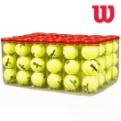 Wilson Pracitce Ball Case (24 Cans) Tennis Balls