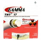 Gamma TNT2 17 Package